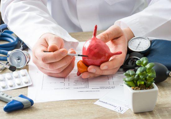 Blasensteine: Symptome, Ursachen, Diagnose & Behandlung